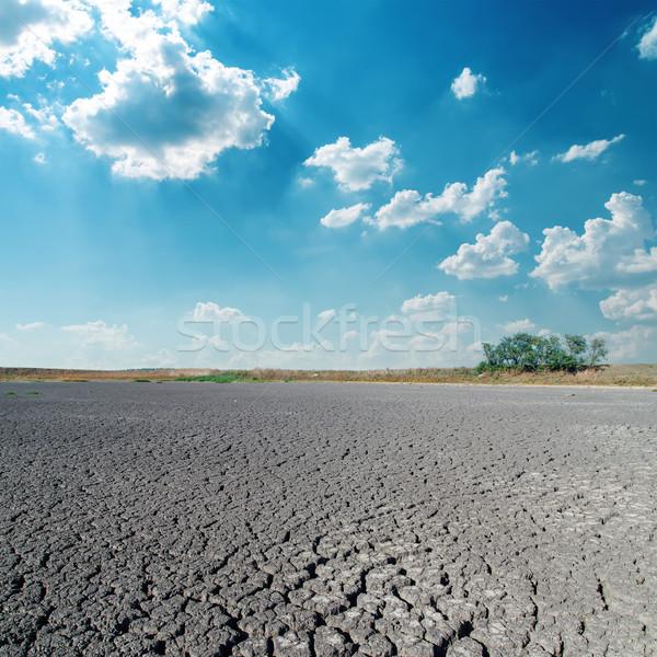 Sivatag felhők kék ég nap természet nyár Stock fotó © mycola