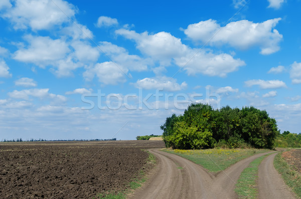 two rural road and cloudy sky Stock photo © mycola