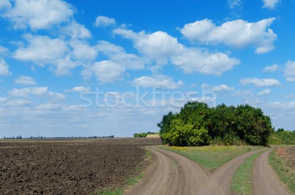 Dois rural estrada nublado céu paisagem Foto stock © mycola
