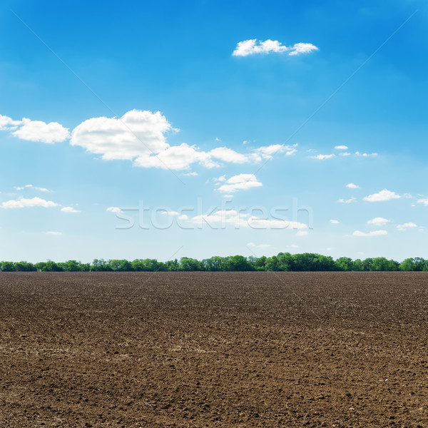 plowed black spring field and white clouds on blue sky Stock photo © mycola