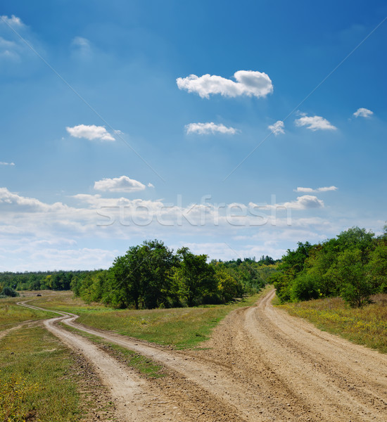 two rural roads go to horizon under cloudy sky Stock photo © mycola