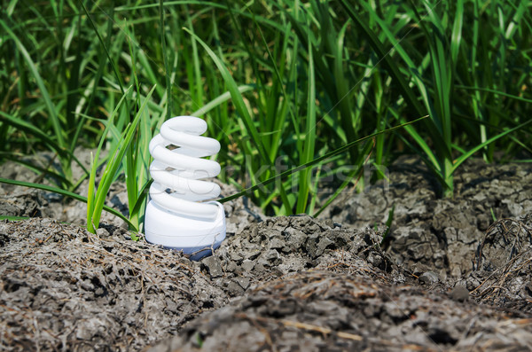 light bulb between drought land and green grass Stock photo © mycola