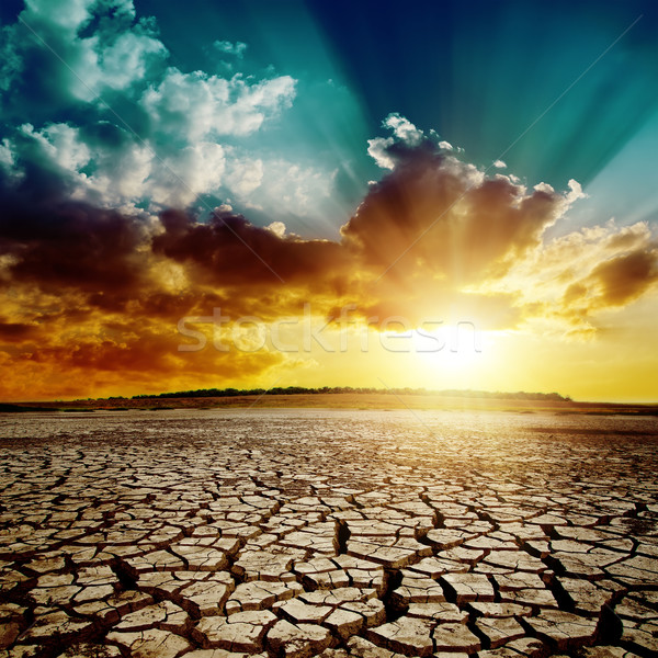 global warming. dramatic sunset over cracked earth Stock photo © mycola