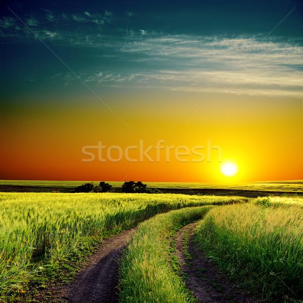 Dobre wygaśnięcia drogowego horyzoncie zielone dziedzinie Zdjęcia stock © mycola