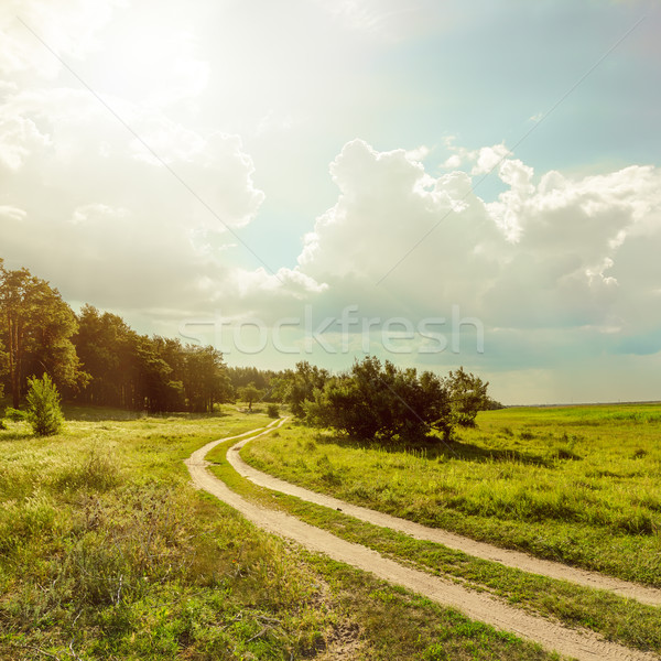 road near forest under sun with low clouds Stock photo © mycola