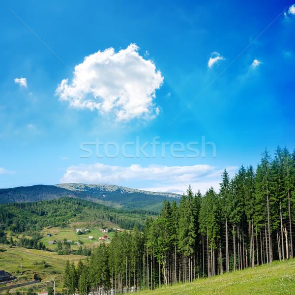 красивой зеленый горные пейзаж деревья регион Сток-фото © mycola