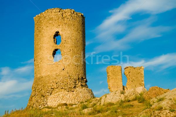 tower Stock photo © mycola