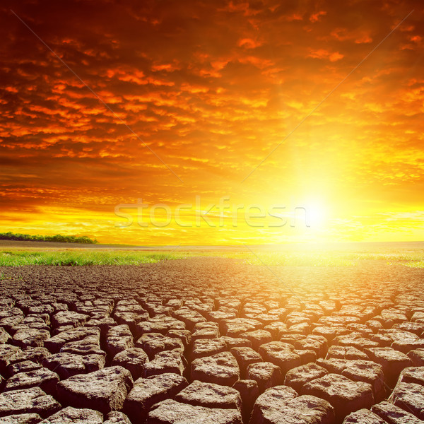 Repedt Föld piros naplemente természet tájkép Stock fotó © mycola