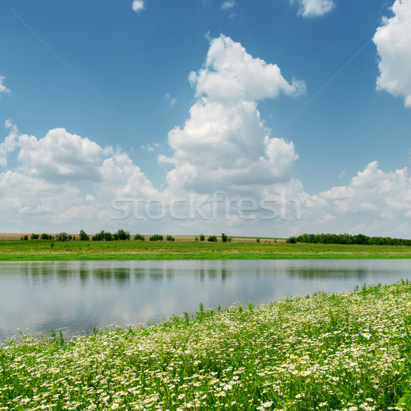 Stock photo: blue sky with clouds over river and meadow with chamomiles