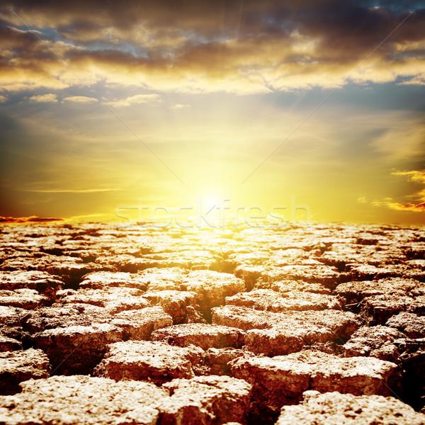 Repedt sivatag közelkép naplemente tájkép nyár Stock fotó © mycola