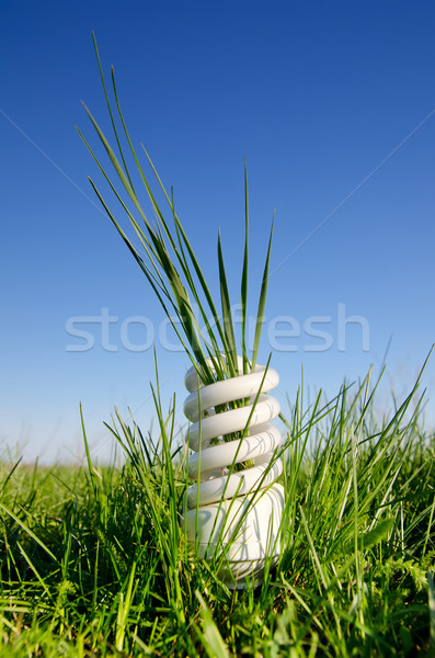 Foto d'archivio: Energia · lampada · verde · campo · business
