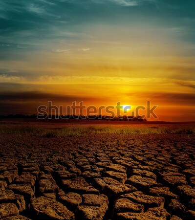 dramatic sunset over cracked earth Stock photo © mycola