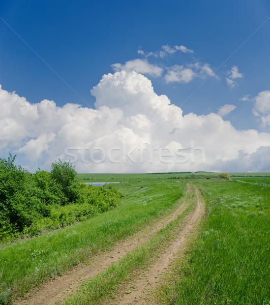 Kırsal yol bulutlar ağaç bahar çim Stok fotoğraf © mycola