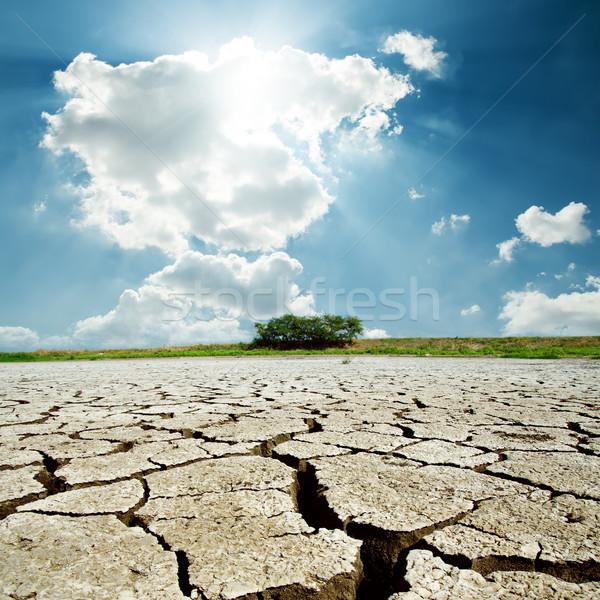 干ばつ 地球 太陽 曇った 空 テクスチャ ストックフォト © mycola