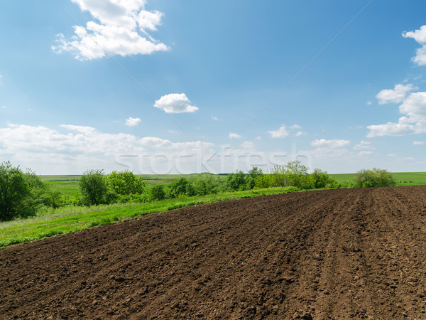 black plowed field and blue sky with clouds Stock photo © mycola