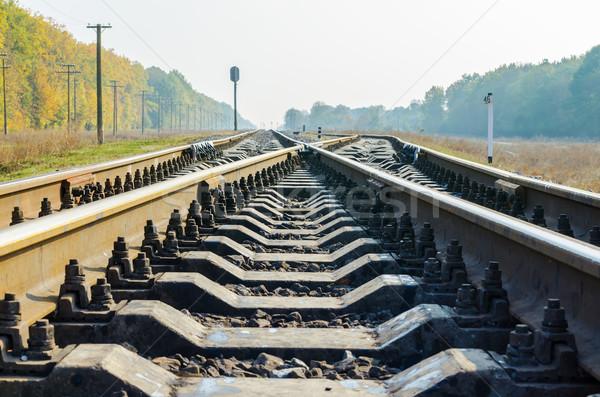 railway crossing Stock photo © mycola