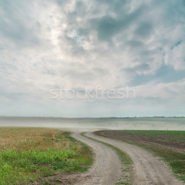 dirty road with dust and dramatic sky over it Stock photo © mycola
