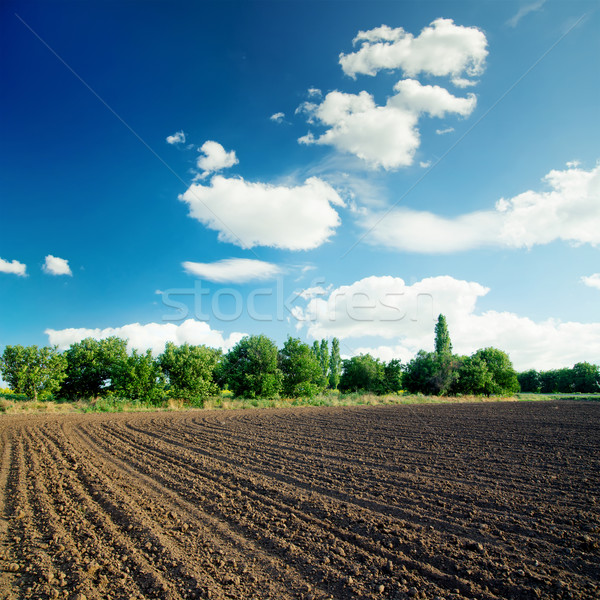 black agriculture field and blue sky with clouds Stock photo © mycola