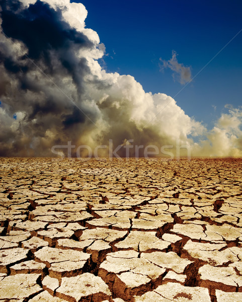 global warming Stock photo © mycola