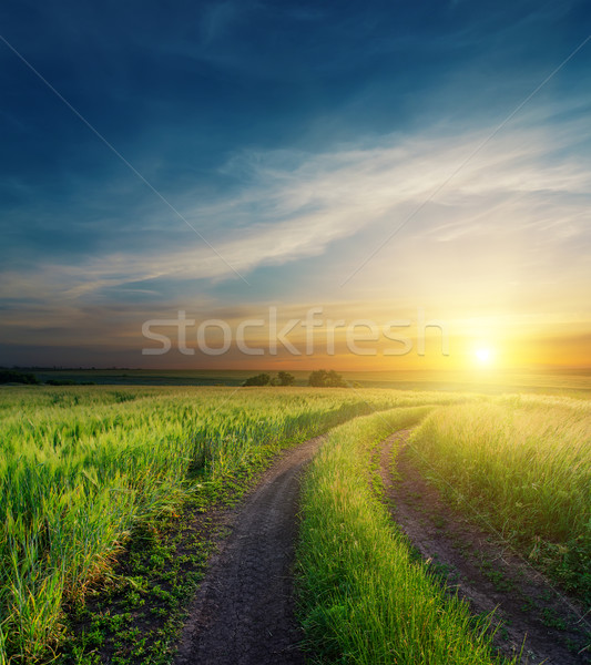 dramatic sunset over dirty road to horizon Stock photo © mycola