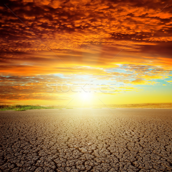 good red sunset over drought eart Stock photo © mycola