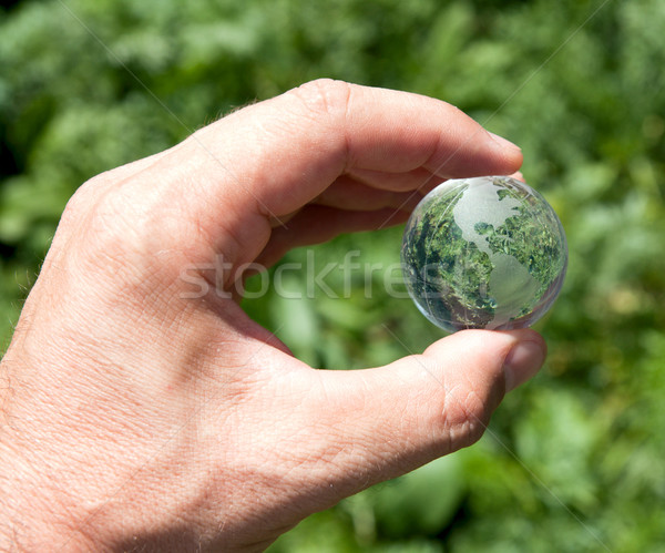 world in hand over green Stock photo © mycola