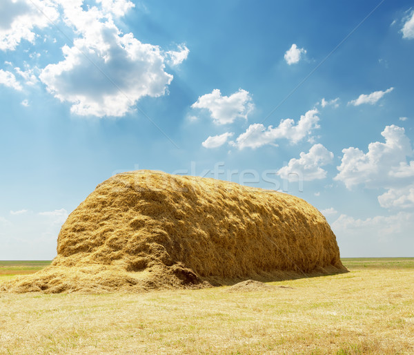 stack of straw under blue sky with clouds Stock photo © mycola