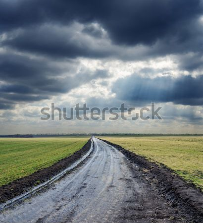 wet rural road under dramatic cloudy sky with sunbeams Stock photo © mycola