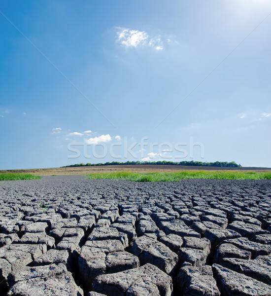 Globális felmelegedés nap felhő levegő föld időjárás Stock fotó © mycola