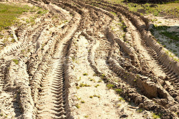 Kirli yol doğa manzara yaz siyah Stok fotoğraf © mycola