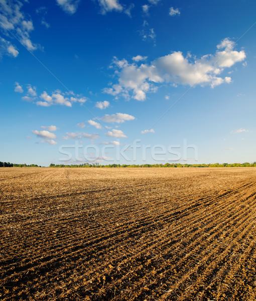 black ploughed field under blue sky Stock photo © mycola
