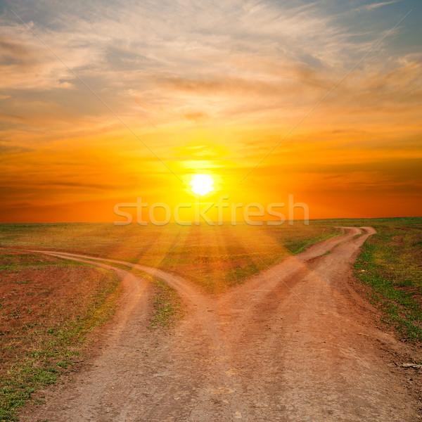 Twee vuile zonnestralen zonsondergang tijd gras Stockfoto © mycola