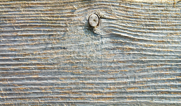 textured surface of board with a twig Stock photo © mycola