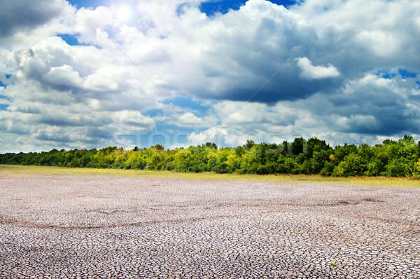 Sol nubes agrietado campo paisaje fondo Foto stock © mycola