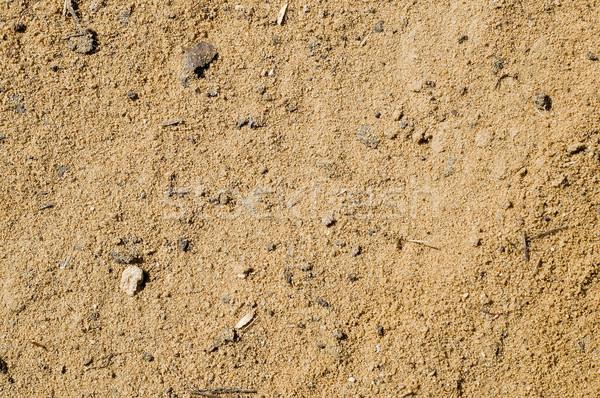sand Stock photo © mycola