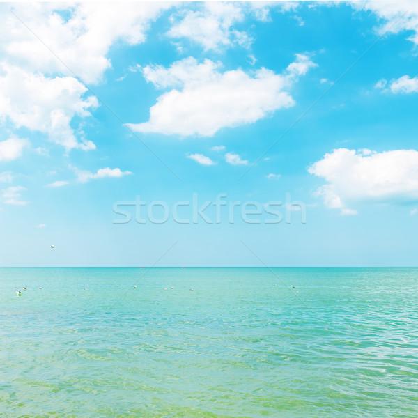 azure color sea and cloudy sky Stock photo © mycola