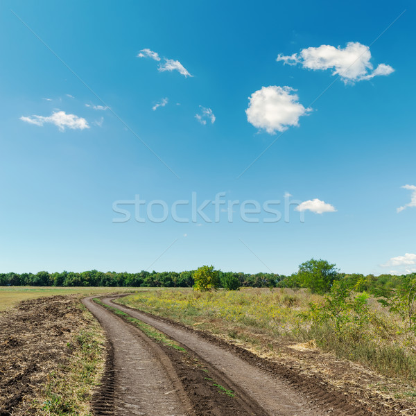 rural road and deep blue sky Stock photo © mycola