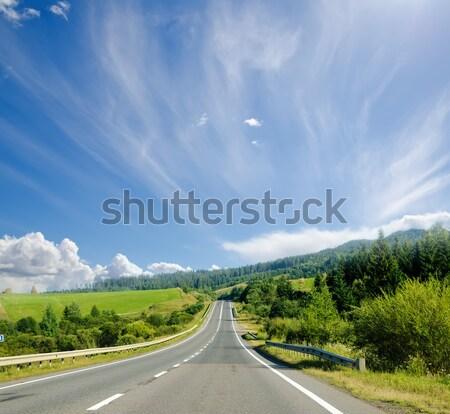 road in mountain. Ukranian Carpathians Stock photo © mycola