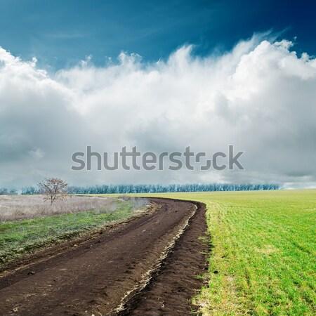 Wiosną drogowego mętny niebo trawy charakter Zdjęcia stock © mycola