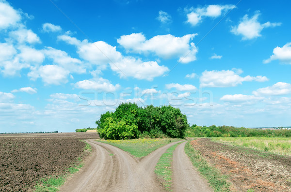 two rural roads to cloudy horizon Stock photo © mycola