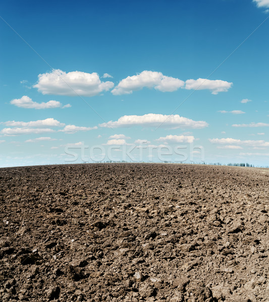 plowed field and cloudy sky Stock photo © mycola