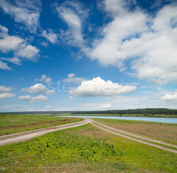 two rural road in green field Stock photo © mycola