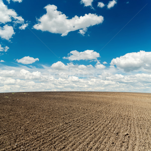 plowed field and deep blue sky with clouds over it Stock photo © mycola