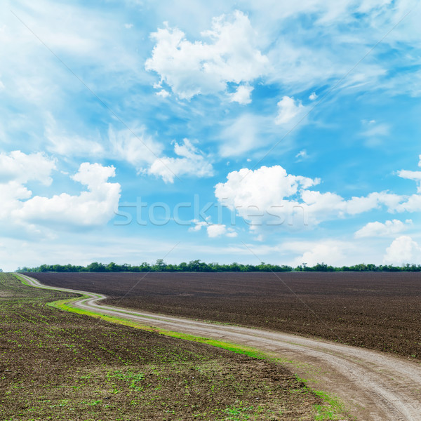 winding rural road under dramatic sky Stock photo © mycola