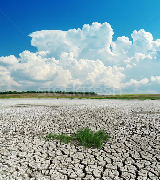 Aszály Föld zöld fű felhők tájkép forró Stock fotó © mycola