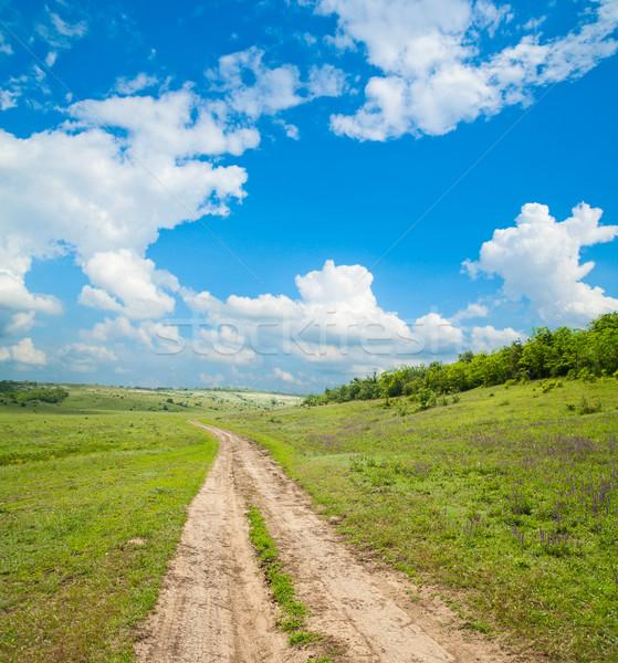 way to horizon Stock photo © mycola