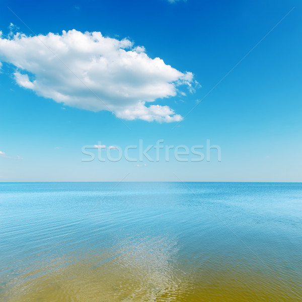 yellow color shallow waters of the sea and cloud over it Stock photo © mycola