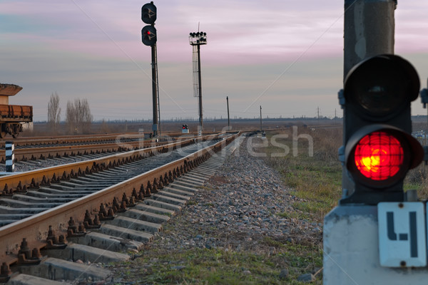 railroad track and stop light Stock photo © mycola