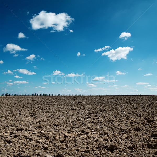 plowed field and blue sky Stock photo © mycola