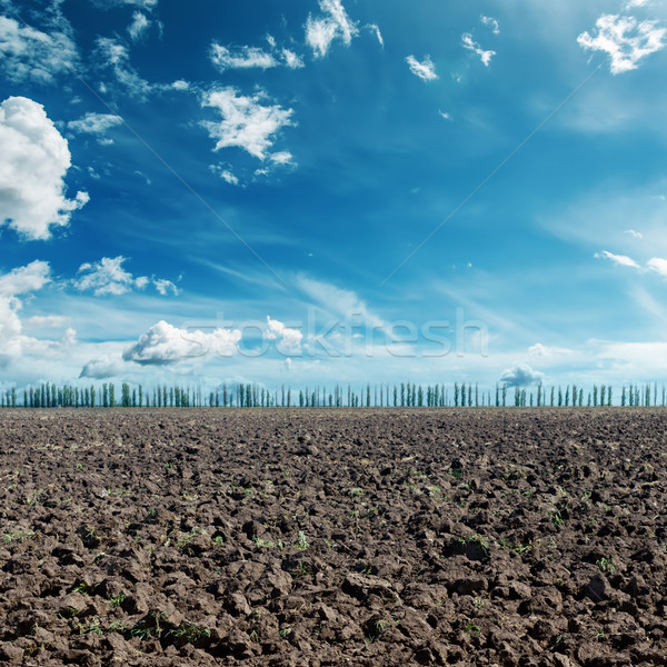 deep blue sky with clouds and black agriculture field Stock photo © mycola